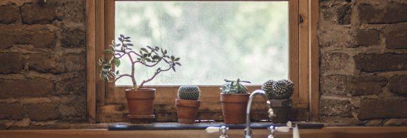 Pourquoi peindre des fenêtres en bois ?